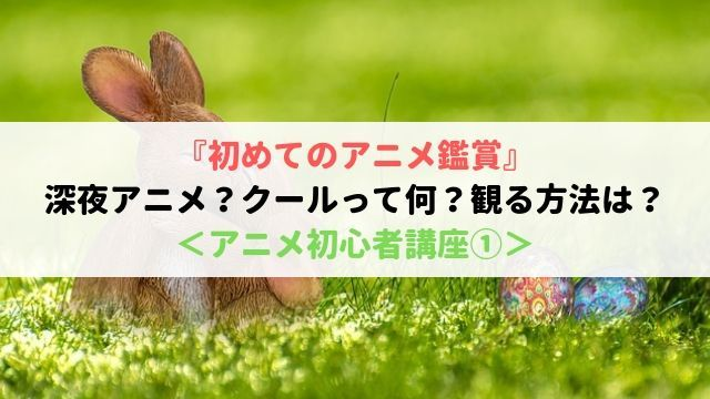 初めて アニメ鑑賞 深夜アニメ クール 観る方法 アニメ 初心者 講座