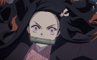 竈門禰󠄀豆子 ねづこ